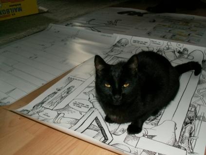 Hallo Latscho, best cat ever.